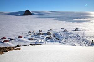 Kebun Binatang Antartika